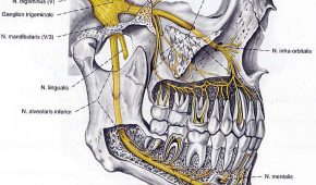 Gây tê trong điều trị tủy răng.